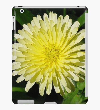 Pale Yellow Mary Bud Marigold With Garden Background iPad Case/Skin