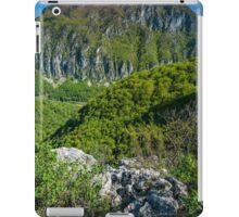 Limestone mountains iPad Case/Skin