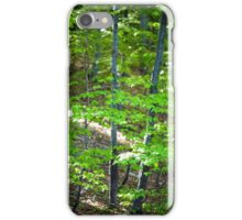 Young beech forest iPhone Case/Skin
