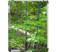 Young beech forest iPad Case/Skin