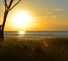 Golden sunrise by L Spittall