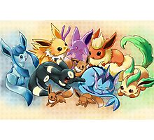 pokemon: eevee and it's evolutions  Photographic Print