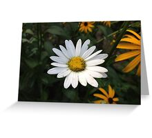 A Lone Daisy Greeting Card