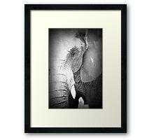 ELEFANT Framed Print