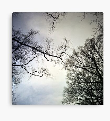 Ghostly Trees Canvas Print