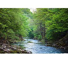 River and trees Photographic Print
