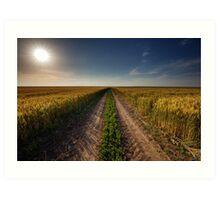 Rural road through wheat field Art Print