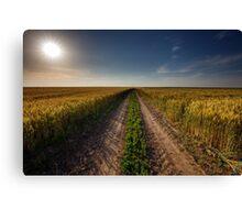 Rural road through wheat field Canvas Print