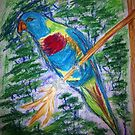 Rainbow Lorikeet by Alison Pearce
