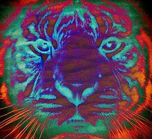 Tiger_8533 by AnkhaDesh