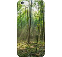 Rays of light in the forest iPhone Case/Skin