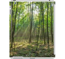 Rays of light in the forest iPad Case/Skin