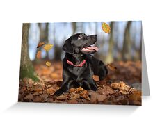 Just loving Autumn Greeting Card
