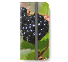 Blackberries  iPhone Wallet/Case/Skin