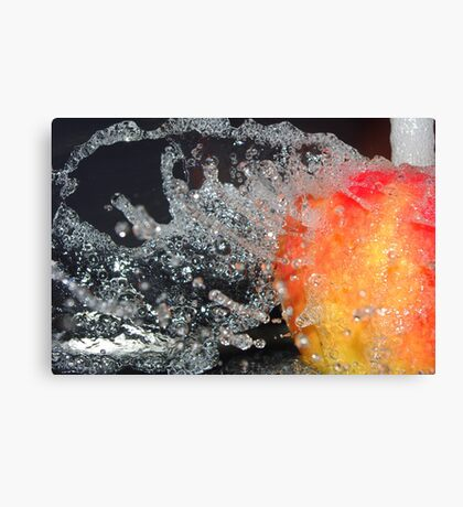 Water off an apple's back Canvas Print