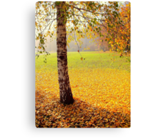 The end of the golden autumn Canvas Print