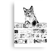 Cat on the Wall  Canvas Print