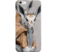 Springbok Tailgater iPhone Case/Skin