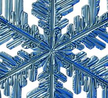 Snowflake photo - Winter is coming! Sticker