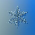 Snowflake photo - Winter is coming! by Alexey Kljatov