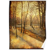 Winter on the Olza River Poster