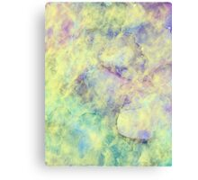 Touch of Light Canvas Print