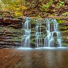 Autumn Trickle Over Cayuga Falls by Gene Walls