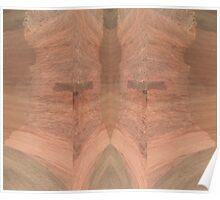 Redwood Mask #1 Poster