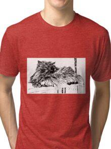 Pugsy the persian cat Tri-blend T-Shirt
