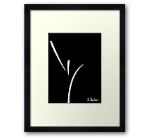 Front View Framed Print