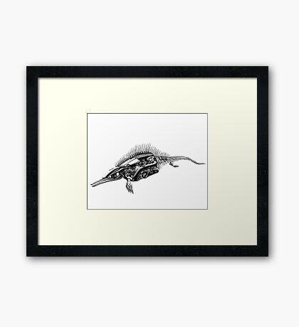 dinosaur fossil Framed Print