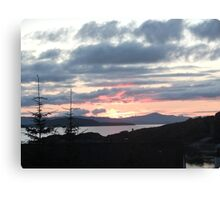 Last rays over Tingle Creek Canvas Print