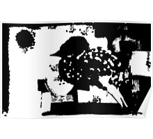 Birdy Graphic Doodle Poster