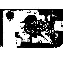 Birdy Graphic Doodle Photographic Print