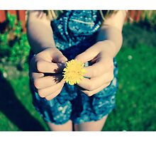 A Gift in Summer Photographic Print