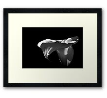 Jarro 9220 Framed Print