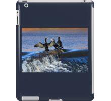 Cormorants at Exeter Quays Devon, UK iPad Case/Skin