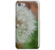 Wishful iPhone Case/Skin