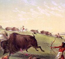 Catlin - Buffalo Hunt Sticker
