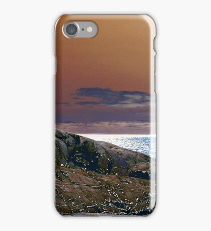 An Enchanting Outlook iPhone Case/Skin