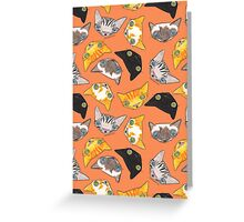 """""""Oro?"""" Cats-Salmon Color Greeting Card"""