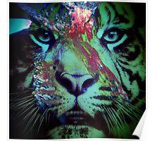 Tiger_8616 Poster