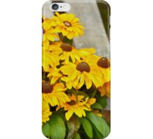 Flowers by the Bench iPhone Case/Skin
