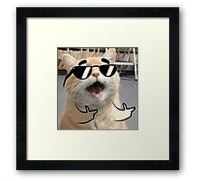 Cool Cat on it Framed Print