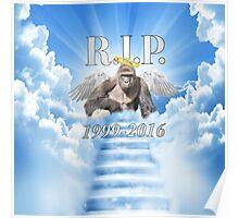 RIP Harambe Poster