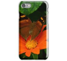 Summer Autumn iPhone Case/Skin