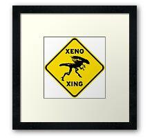 Xeno Xing Framed Print