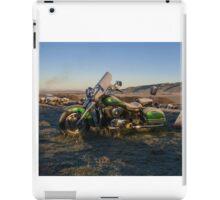 Frosty Brass iPad Case/Skin