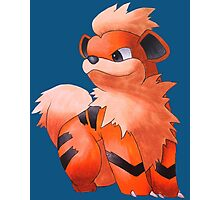 Pokemon Growlithe Photographic Print
