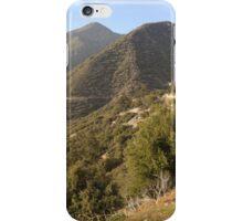 Mountain Brush iPhone Case/Skin